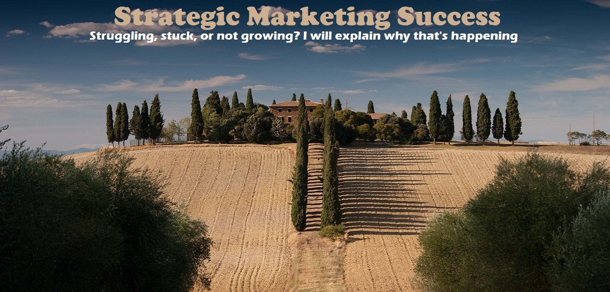 IMJustice Marketing and Strategy for your business