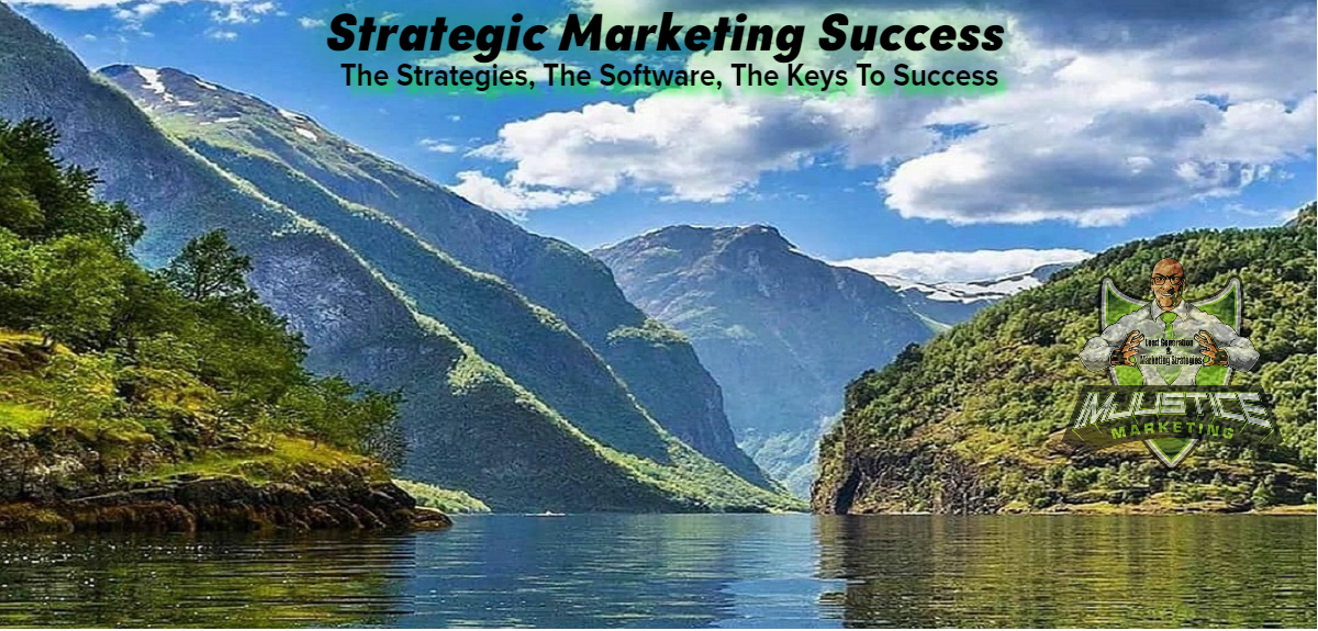 The Strategies The Software The Success