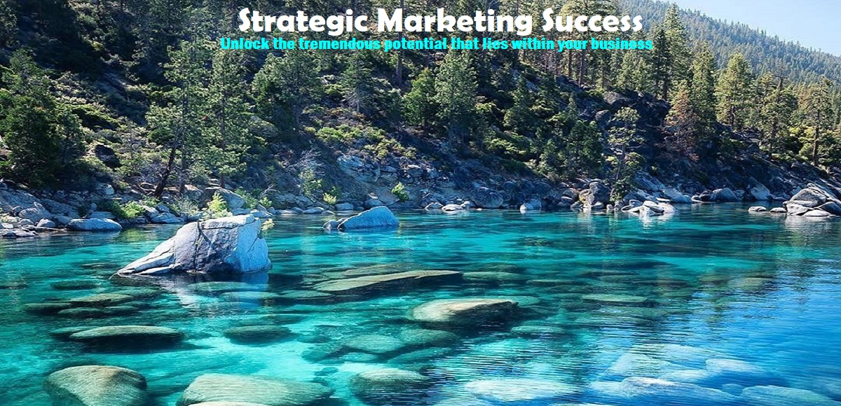 Your Business Vision Statement